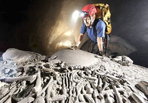 300-million-year fossils found in Son Doong cave