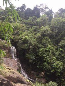 Phong Nha Cave, Paradise Cave, Dark Cave, Phong Nha Botanic Garden (2 days 1 night)
